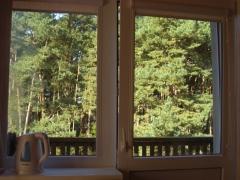 Vaizdas pro kambario langą